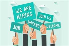 cuhp job salary candidate