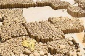 government has purchased 29 million tonnes of wheat