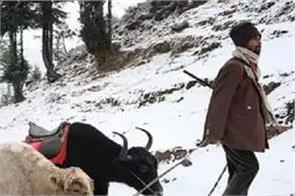 300 sikkim deaths in north sikkim