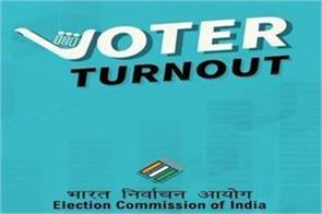 voter turnout app will give voting percentage information