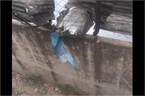iaf jaguar hua crash child balanced pilot at ambala air force station