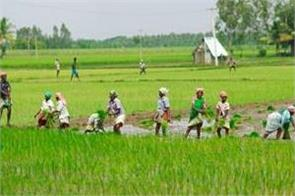 farmers will be voluntary for crop insurance