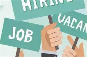 government jobs 2019 vacancy for 78 posts of assistant professors