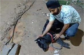 lives his life lost pet dog saved his owner