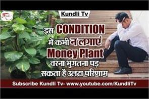 vastu tips related to money plant