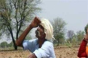 the gift given by the government to the village poor and the farmer