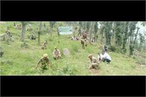 green jammu abhiyan by forest dept