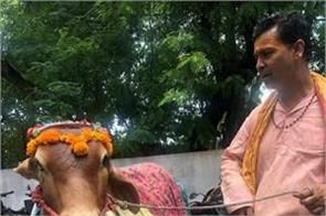 robert vadra share a video of cow
