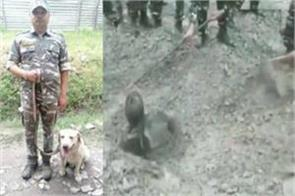 crpf dog wisely survived a man