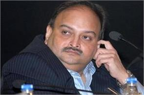 mehul s custodial interrogation of ed s big action assets of seized 24 crore