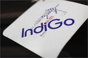 indigo s profit increased 43 times profit of rs 1203 crore in june quarter