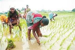 the role of women in agriculture should not be ignored