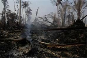 fire in the amazon forests famous as the lungs of the earth