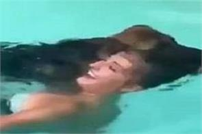 the dog jumped into the swimming pool for saving girl life
