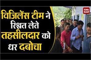 vigilance team arrested tehsildar for taking bribe