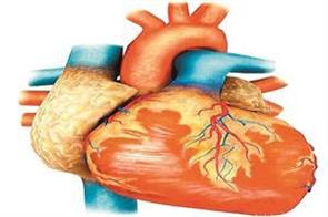 number of heart patients in punjab is highest in the country