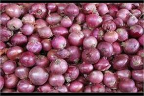 chandigarh administration will sell onions