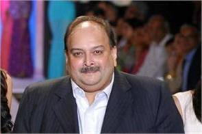 antigua pm told choksi a cheater said will have to go back to his country