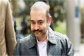 interpol red corner notice issued against nirav modi s brother nehal modi