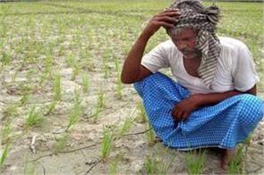 the road to self sufficient india goes through the agricultural sector