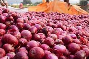 permitted export of limited quantity of selected variety of onions
