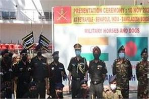 indian army gifts 20 fully trained military horses to bangladesh