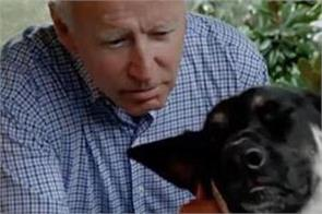 joe biden fractures foot while playing with his dog