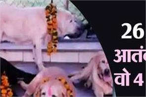 national news 26 11 mumbai attack lashkar e taiba sniffer dogs mumbai police