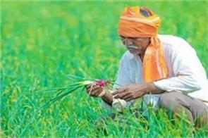 65000 crore fertilizer subsidy announced for farmers