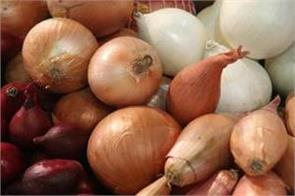discount onion imports till january 31 price may come down