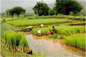 12 thousand crore rupees will be distributed among 6 crore farmers on january 2