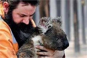 ecologist cliams billions animals have died in australian bushfires