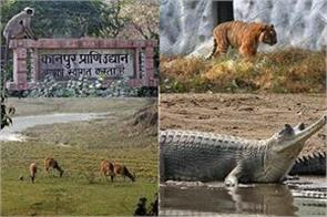 up alert issued on bird flu security arrangements made in zoos