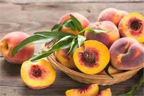 peaches did not reach the market farmers fear heavy losses