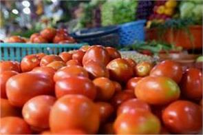 lockdown tomato prices hit three year low