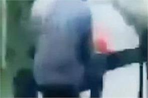 buffalo kicked video viral driving