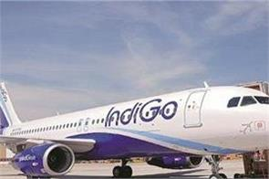 indigo is in the race to buy virgin australia the largest shareholder company