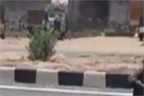 rajasthan highway video viral dog meat