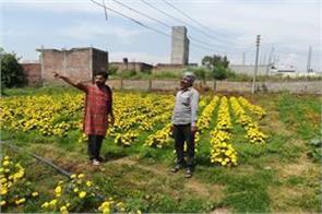 flower farmers facing loss