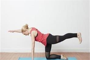 bird dog exercise for loss belly fat