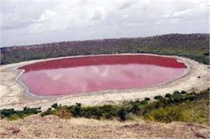 lonar lake water suddenly turns pink
