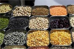 efforts to increase khesari pulses production intensified