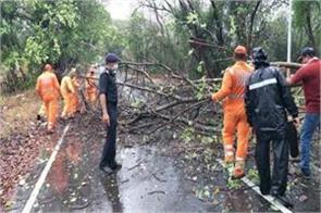 maharashtra cyclone nisarg hit alibaug trees fell somewhere