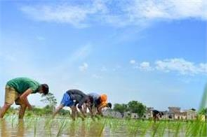 farming picks up due to better monsoon area of kharif crops