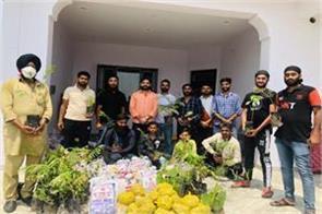 plantation drive in ramgarh vijaypur