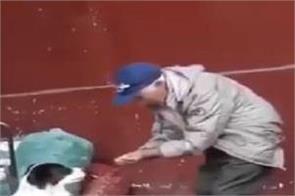 social media elderly person dog video viral