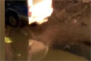 social media chhattisgarh ambikapur video viral