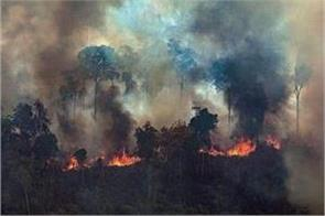 fires in brazil s amazon rainforest increases by 28 in july report