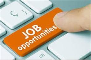 recruitment in 2984 posts in punjab apply till 31 august