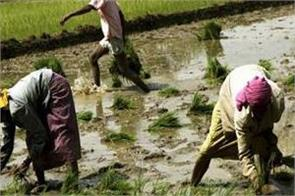indian economy had a bad phase agriculture sector crossed